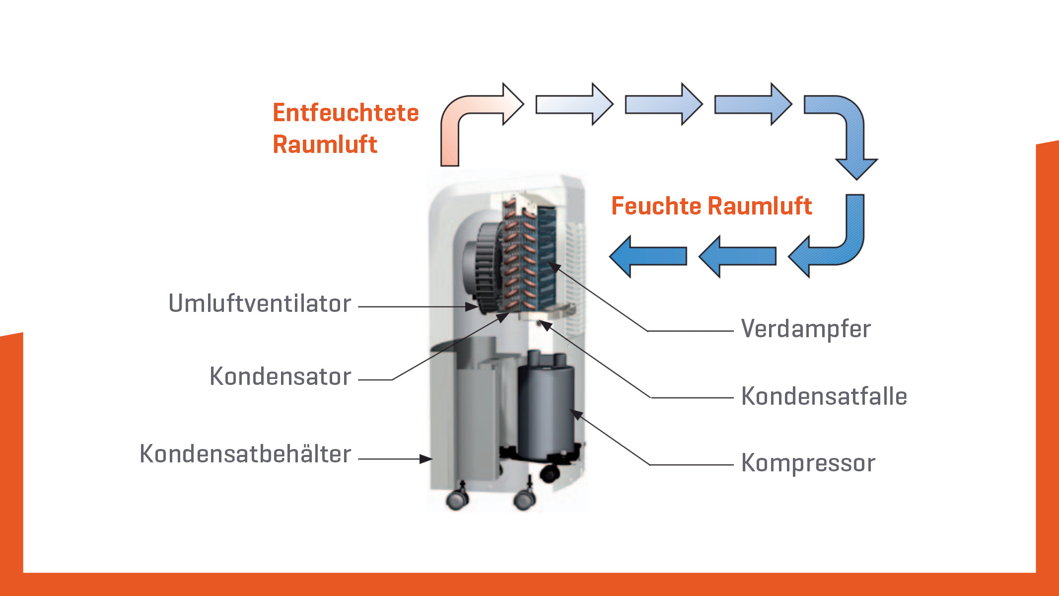 Luftebtfeuchter-funktion-grafik