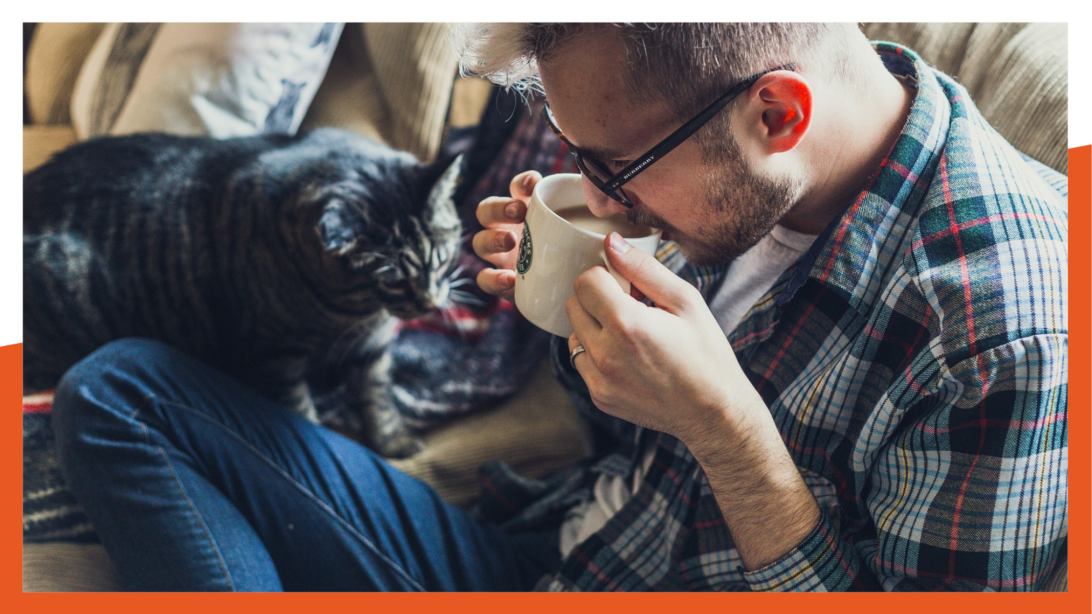 Tierhaarallergie-Luftreiniger-Hunde und Katzen